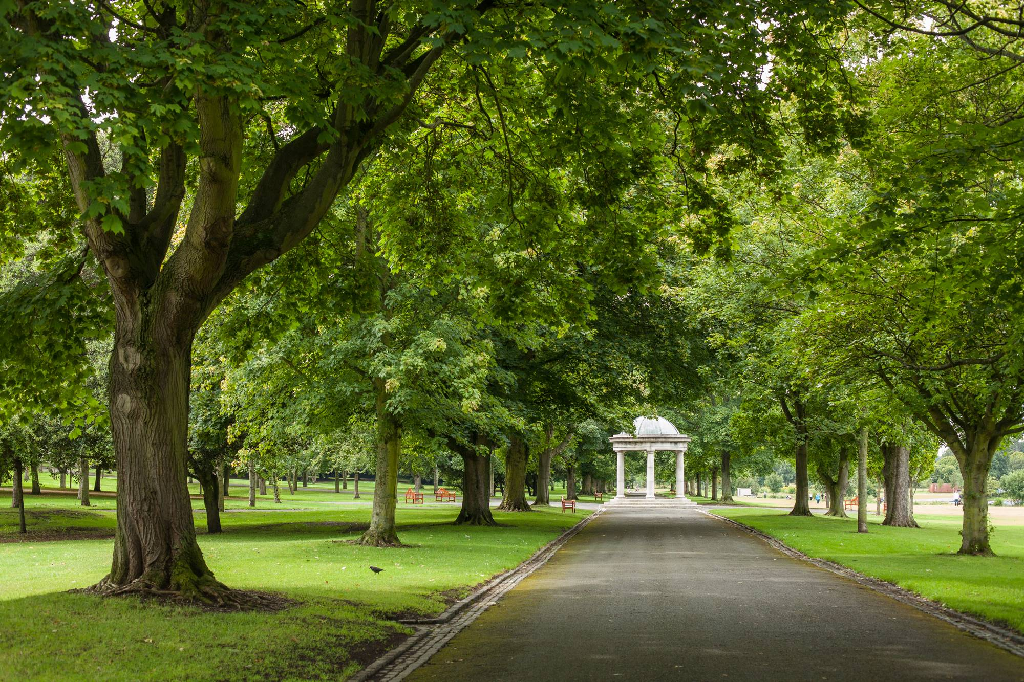 Avenue of trees leading to the temple in the Irish National War Memorial Gardens. Julie Matkin.